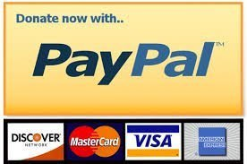 donate-now-with-paypal